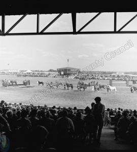 Great Yorkshire Show, 1967